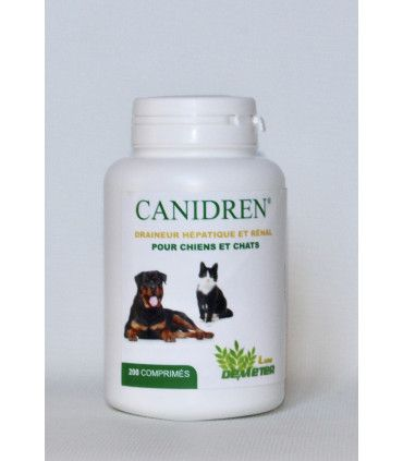 Probiotique chien contre intoxications